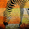 Zebra Art - Rng02t01 by Variance Collections