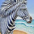 Zebra By The Sea by Tish Wynne
