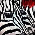 Zebra Couple by Saundra Myles