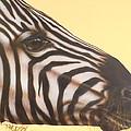Zebra by Darren Robinson