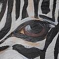 Zebra Eye by Marenda Smith