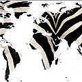 Zebra Fur World Map by Rose Santuci-Sofranko