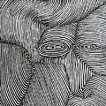 Zebra Line by Abu Artist