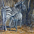 Zebra Mother And Foal by Caroline Street