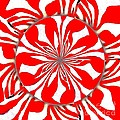 Zebra Red Swirling Kaleidoscope  by Saundra Myles