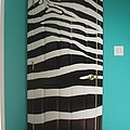 Zebra Stripe Mural - Door Number 2 by Sean Connolly