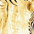 Zebra Up Closer by Alice Gipson