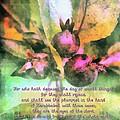 Zechariah 4 10 by Michelle Greene Wheeler