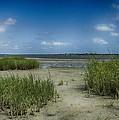 Zeke's Island by Seth Solesbee
