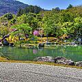 Zen And A Pond by Matt Swinden