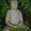 Zen Buddha by Pat Lucas