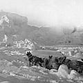 Ziegler Polar Expedition by Granger