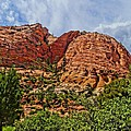 Zion National Park In Summer by Dan Sproul