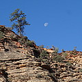 Zion National Park Moonrise by Dan Sproul