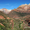 206p Zion National Park by NightVisions