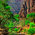 Zion by Rick Mousseau