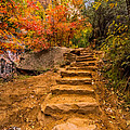 Zion Staircase by Clint Losee