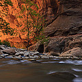 Zions 9 by Ingrid Smith-Johnsen