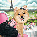 Zoey Bear In Paris by Catia Lee
