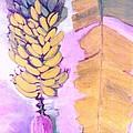 Florida Apple Bananas - 1 by Trudy Brodkin Storace