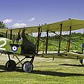 1916 Royal Aircraft F.e.8 World War One Airplane Photo Poster Print by Keith Webber Jr
