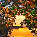 Autumn Leaves A View by Randall Branham