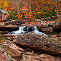 Autumn Leaves At The Mill by Randall Branham