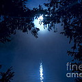 Blue Moon by Bela Torok