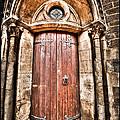 Bronze - Old Door by Beverly Cash