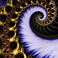 Digital Wave by Clayton Bruster