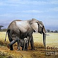 Elephant And Her Child by Francis  Njoroge