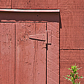 Faded Red Wood Barn Wall by David Letts