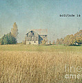 Farm House Solitude by Traci Cottingham
