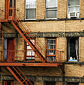 Fire Escapes - Nyc by Madeline Ellis