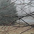 Fog Hangs Heavy by Barry Doherty