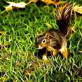 - Fractal - Pointer - Robbie The Squirrel by James Ahn