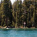 Lake Tahoe Sugar Pine Point Light by LeeAnn McLaneGoetz McLaneGoetzStudioLLCcom