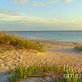 Longboat Key Beach View by Lou Ann Bagnall