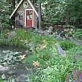 Magic Garden Pond by Susan Carella