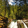 Nooksack Falls  by DMSprouse Art