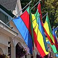 Olcott Flags  7183 by Guy Whiteley