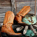 Old Cowboy Boots by Terry Fleckney