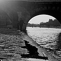 Paris Shadow Fisherman 1964 by Glenn McCurdy