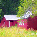 Peaceful Country Barn And Meadow by Peggy Franz
