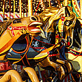 Wild Carrousel Horses  by Garry Gay