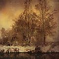 Winter by Mitko  Peroski