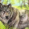 Wolf Summer by Paul Van Scott