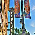 002 Sheas Buffalo by Michael Frank Jr