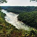 003 Niagara Gorge Trail Series  by Michael Frank Jr