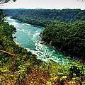 004 Niagara Gorge Trail Series  by Michael Frank Jr